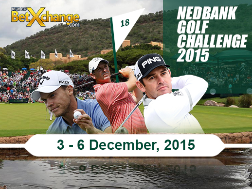 Dave Tindall assesses the 12-man field at the Nedbank Golf Challenge and picks his top wagers.
