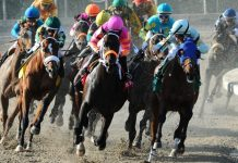 horse race betting